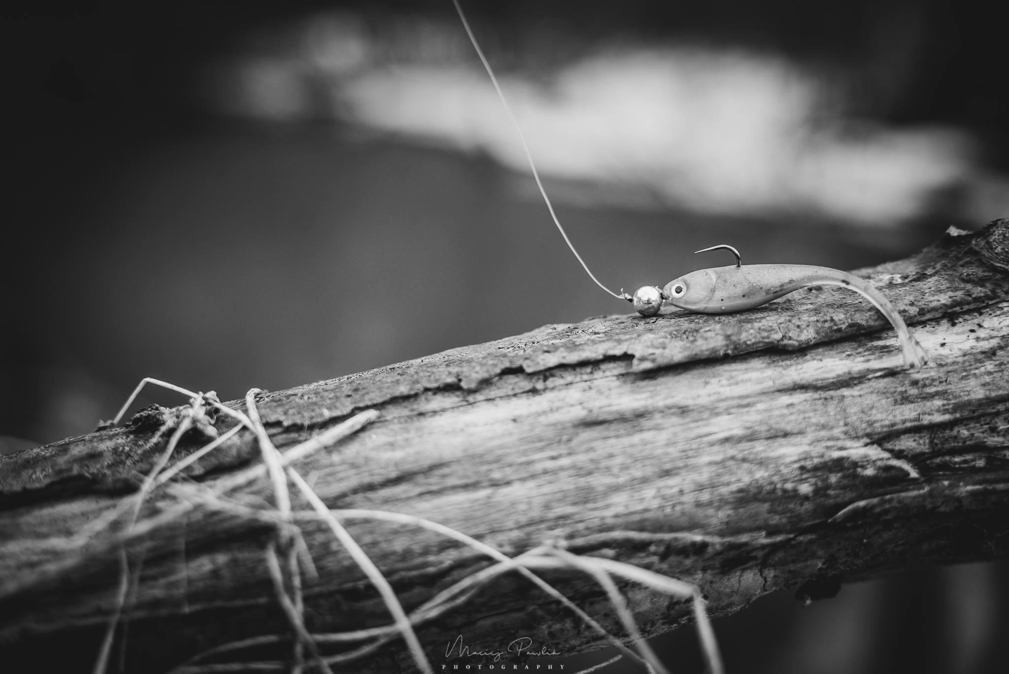 Jesień i delikatne łowienie-01
