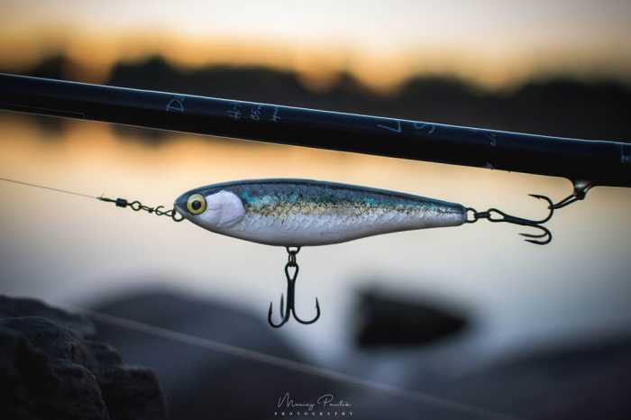 lawica 75tw fishchaser woblery lure